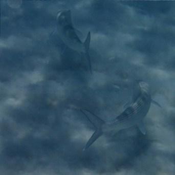 Bonaire Flyfishing Bas-022